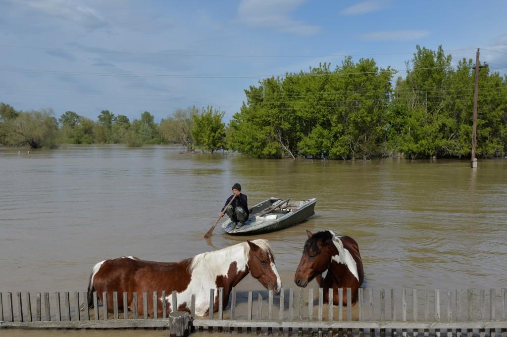 серия «Алтайское наводнение»